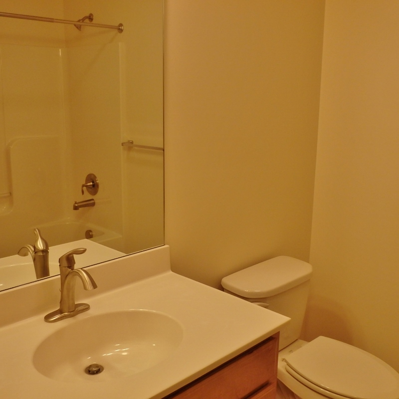 Bathroom photo of the house for rent at 103 Driftwood Drive in State College, PA.