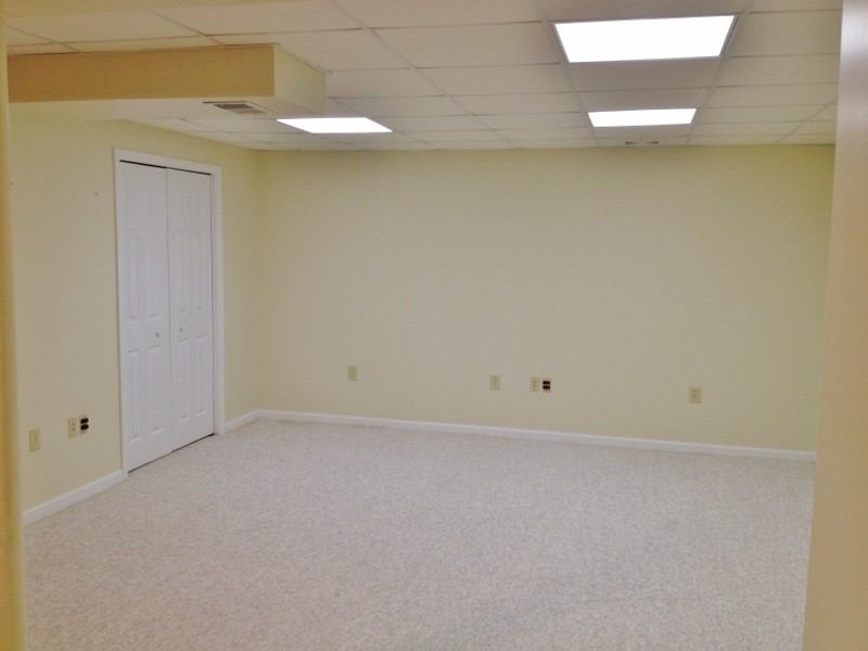 Basement photo at 136 Birchtree Court.