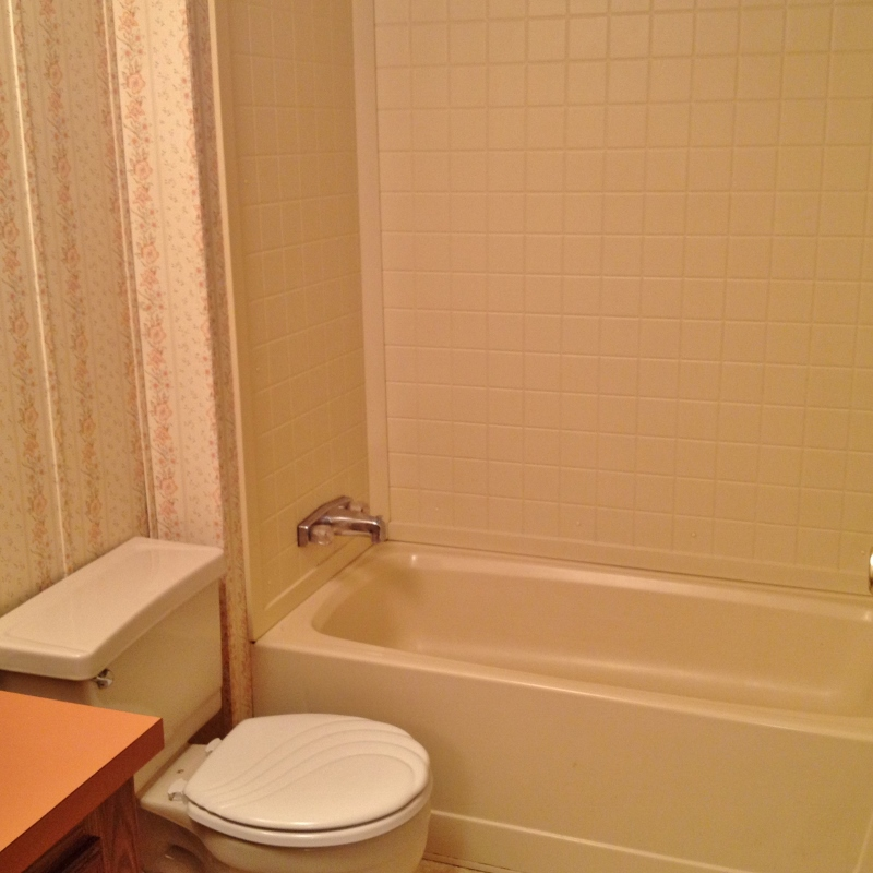 Second bathroom photo of the 3 bedroom house for rent at 123 Driftwood Drive